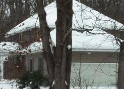 Bank Foreclosures in BIG RAPIDS, MI