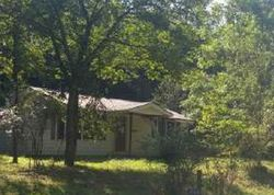 Bank Foreclosures in MINERAL BLUFF, GA