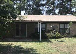 Bank Foreclosures in DAINGERFIELD, TX