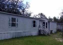 Bank Foreclosures in BRONSON, FL