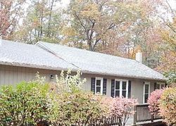 Bank Foreclosures in MINERAL, VA