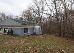 Bank Foreclosures in BLUEMONT, VA