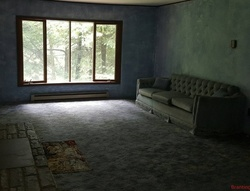 Bank Foreclosures in BRANTINGHAM, NY