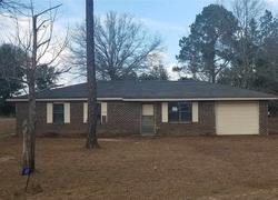 Bank Foreclosures in BUTLER, GA