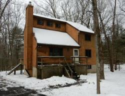 Bank Foreclosures in BUSHKILL, PA