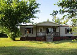 Bank Foreclosures in BRINSON, GA