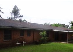 Bank Foreclosures in WOODVILLE, TX
